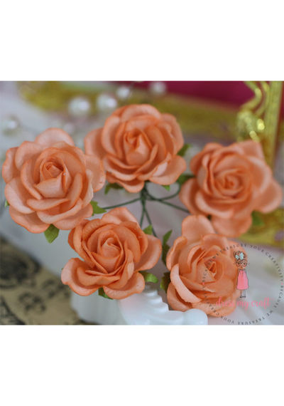 Curved Roses 35 MM - Soft Orange