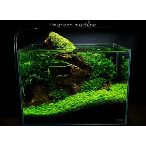 Aquarium Bamboo Rock | Aquascaping Rock