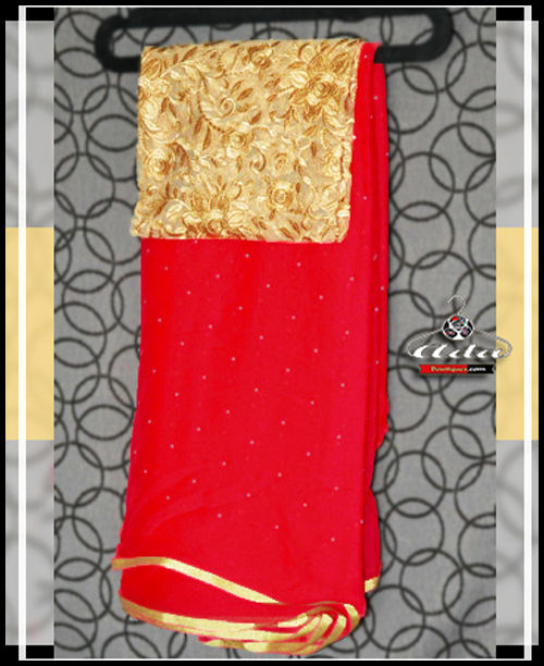 Stunning Saree And Embroidered Blouse Set