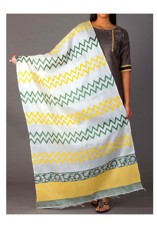 Dee's Alley Block  Printed Pure Tussar Silk Dupatta with ZigZag lines