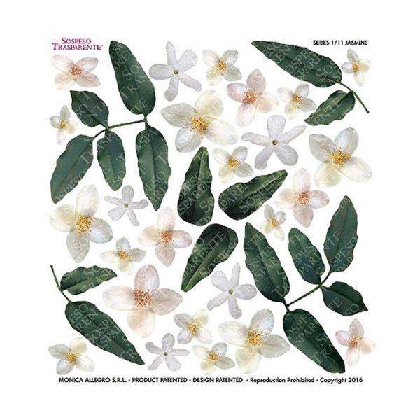 Jasmine - Printed Plastic sheet