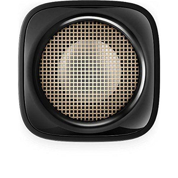 Philips BT100B/00 Wireless Portable Speakers (black)