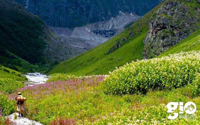 Valley of Flowers trek & Hemkund Sahib