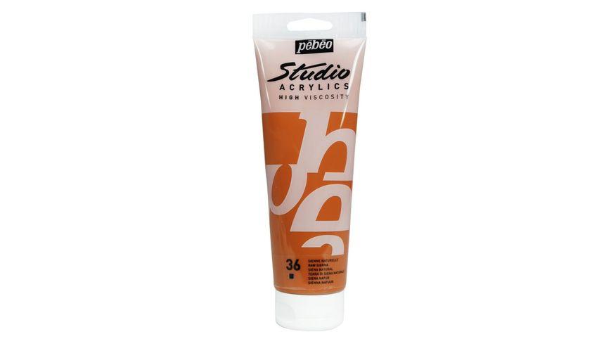 Pebeo Studio Acrylic High Viscosity 250 ml Raw Sienna 36