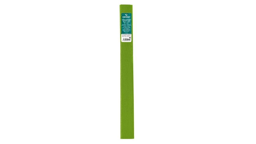 Canson Superior Crepe Paper Roll - 48 GSM, 50 x 250 cm  - Spring Green