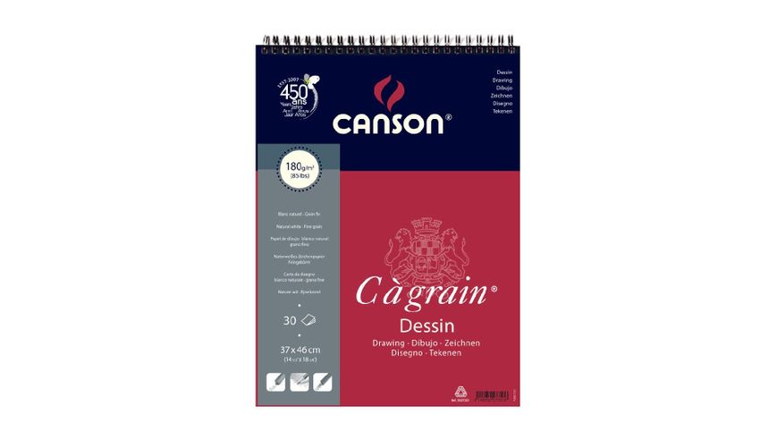 Canson C a' grain 180 GSM 37 x 46 cm Album of 30 Fine Grain Sheets