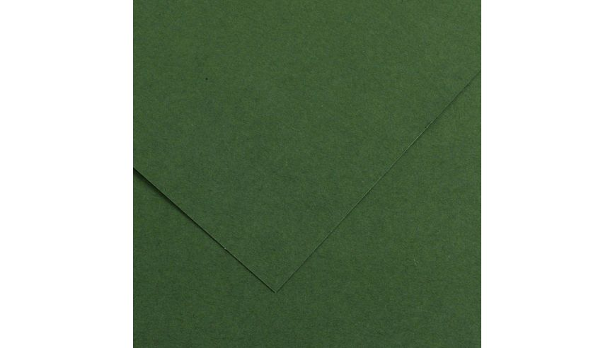 Canson Colorline 150 GSM 50 x 65 cm Pack of 25 Smooth & Light Grain Sheets - Fir Tree
