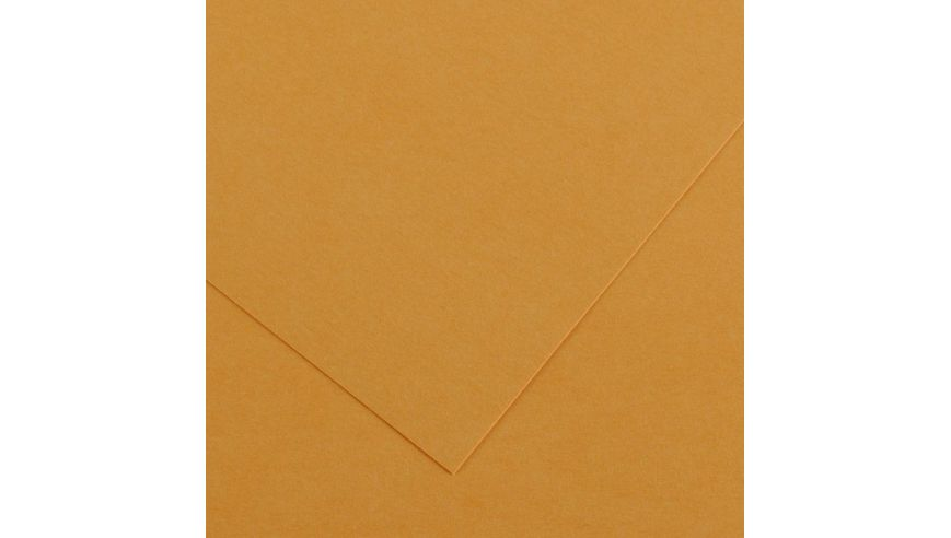 Canson Colorline 150 GSM 50 x 65 cm Pack of 25 Smooth & Light Grain Sheets - Leather
