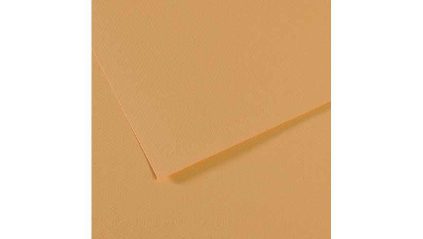 Canson Mi-Teintes 160 GSM 55 x 75 cm Pack of 25 Honeycomb & Fine Grain Sheets - Oyster