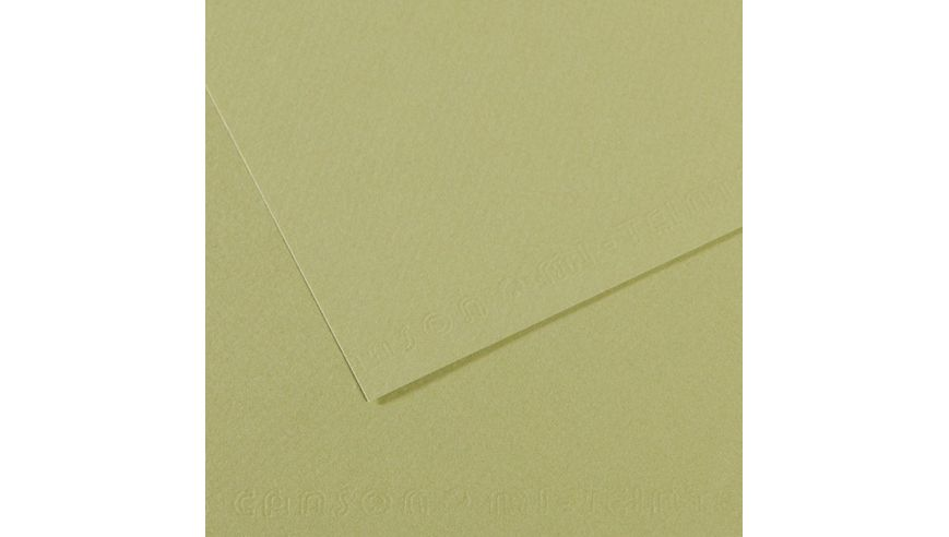 Canson Mi-Teintes 160 GSM 55 x 75 cm Pack of 25 Honeycomb & Fine Grain Sheets - Light Green