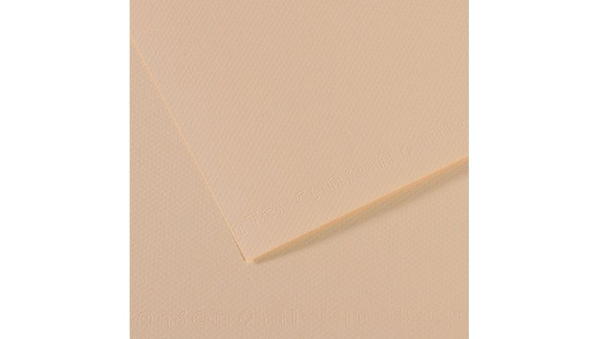Canson Mi-Teintes 160 GSM 55 x 75 cm Pack of 25 Honeycomb & Fine Grain Sheets - Eggshell