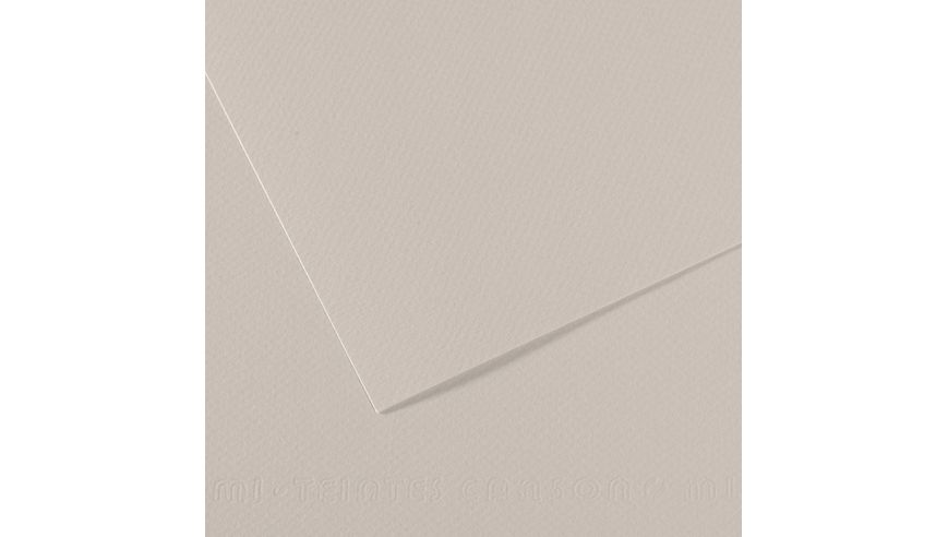 Canson Mi-Teintes 160 GSM 55 x 75 cm Pack of 25 Honeycomb & Fine Grain Sheets - Pearl Grey
