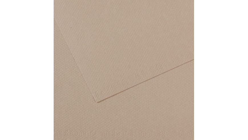 Canson Mi-Teintes 160 GSM 55 x 75 cm Pack of 25 Honeycomb & Fine Grain Sheets - Flannel Grey