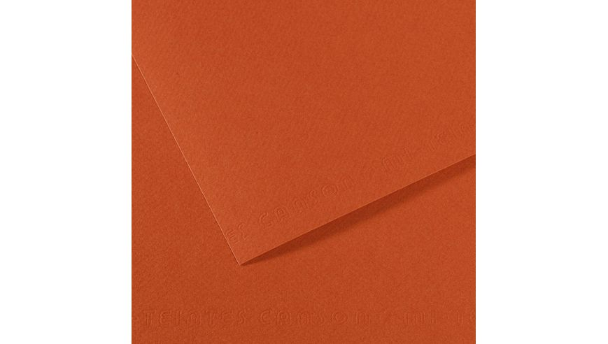 Canson Mi-Teintes 160 GSM 55 x 75 cm Pack of 25 Honeycomb & Fine Grain Sheets - Red Earth