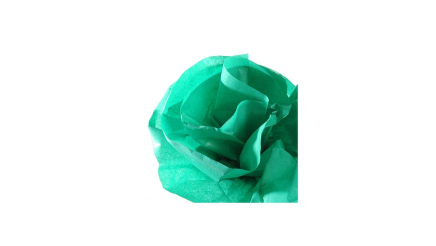 Canson Silk / Tissue Paper Roll - 20 GSM, 50 x 500 cm  - Fern