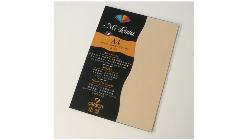 Canson Mi-Teintes 160 GSM A4 Pack of 5 Honeycomb & Fine Grain Sheets - Champagne