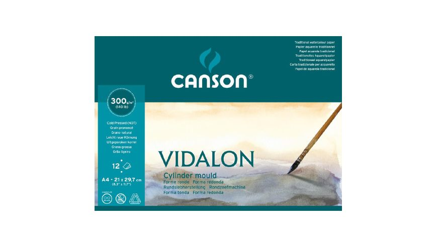 Canson Vidalon 300 GSM A4 Pad of 12 Prominent / Medium Grain Sheets