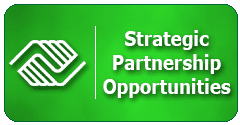 Strategic Partnership Form