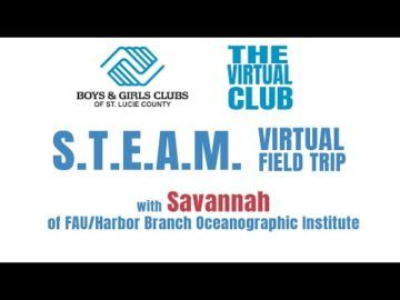 The Virtual Club - Sharks with Savannah of FAU/Harbor Branch Oceanographic Institute