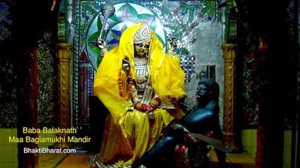बगलामुखी अष्टमी, बगलामुखी माता के अवतार दिवस के रूप में मनाया जाता हैं। जिन्हें माता पीताम्बरा या ब्रह्मास्त्र विद्या भी कहा जाता है।