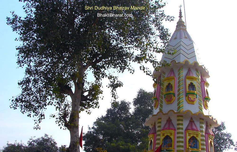 दूधिया भैरव नाथ मंदिर () - Puran Kila, Near Pragati Maidan Delhi New Delhi