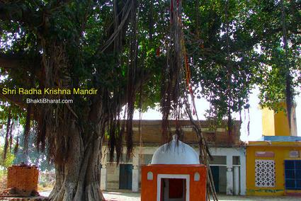 श्री राधा कृष्ण मंदिर, सैनावली () - Sainavali or Sehnaoli Sirsaganj Uttar Pradesh