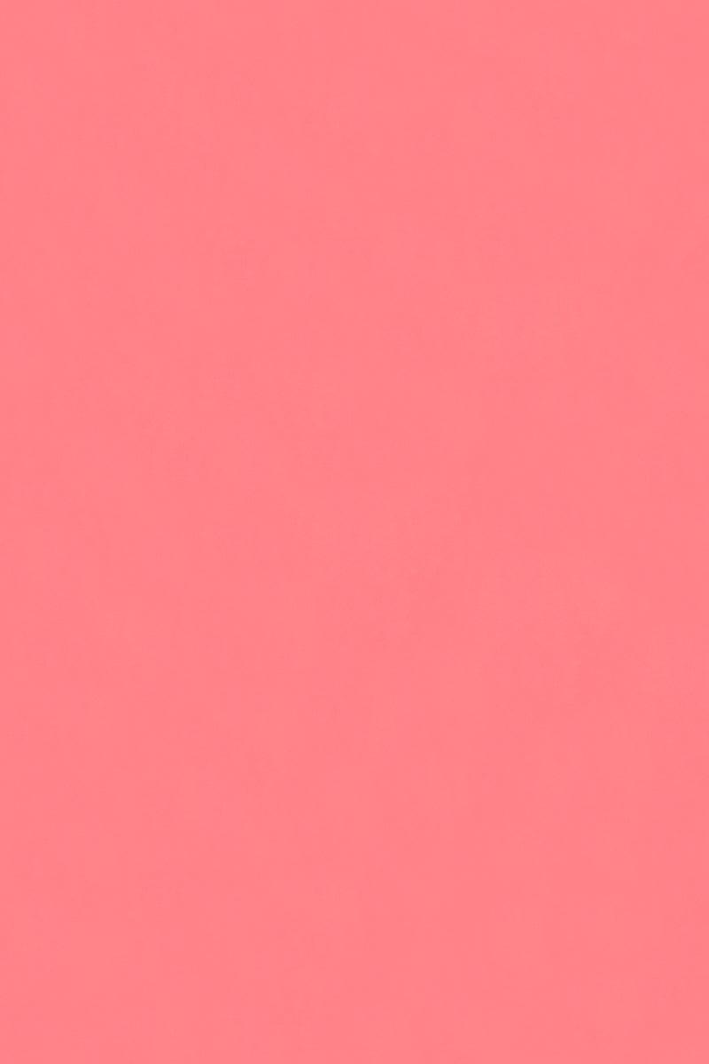 STELLA MCCARTNEY Classic High Cut Bikini Bottom - Fluo Pink Bikini Bottom | Fluo Pink| Stella McCartney High Cut Bikini Bottom - Fluo Pink High rise  High cut leg Cheeky - moderate coverage  Front View