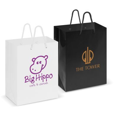 108513 Large Laminated Branded Paper Bags With Rope Handle (25.4cm x 32.8cm x 12.6cm)