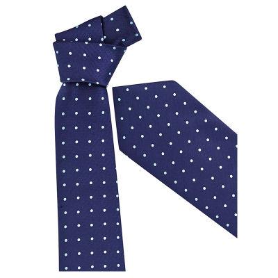 99100 Spot Printed Ties