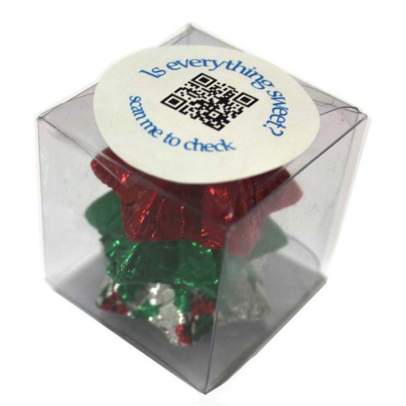 CCX012 Chocolate Filled Soft Branded Cubes - 30g