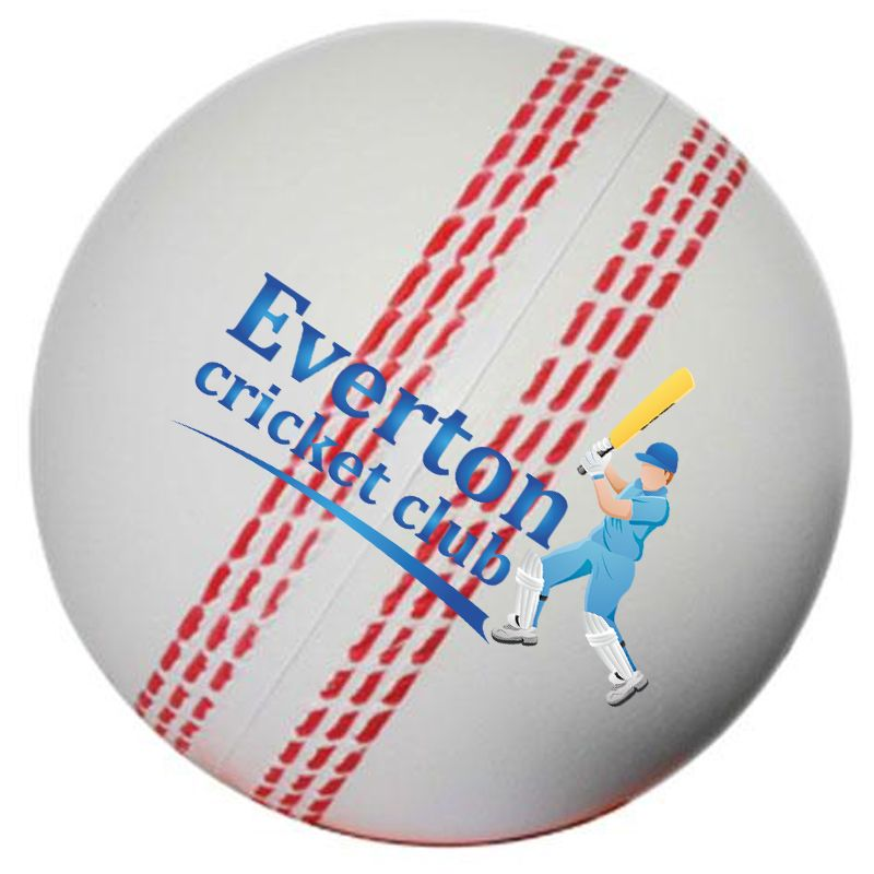 S16 Cricket Ball White Promotional Sports Stress Shapes