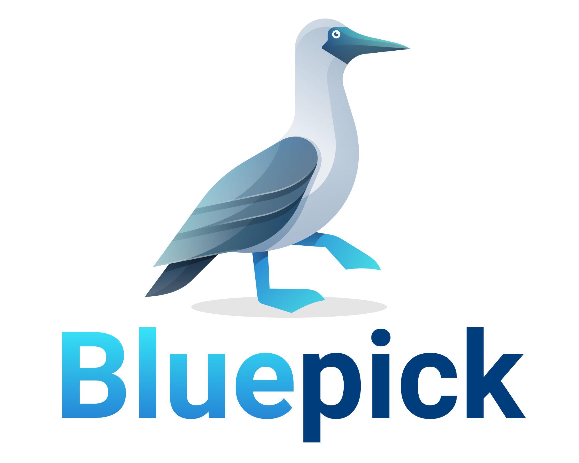 Bluepick Logo Blaufußtölpelund Bluepick Name