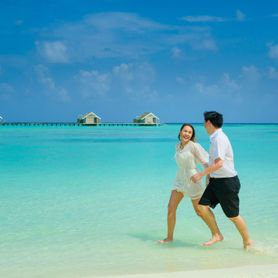 BEACH VILLAS / Cocoon Maldives Resort / 8 Nights