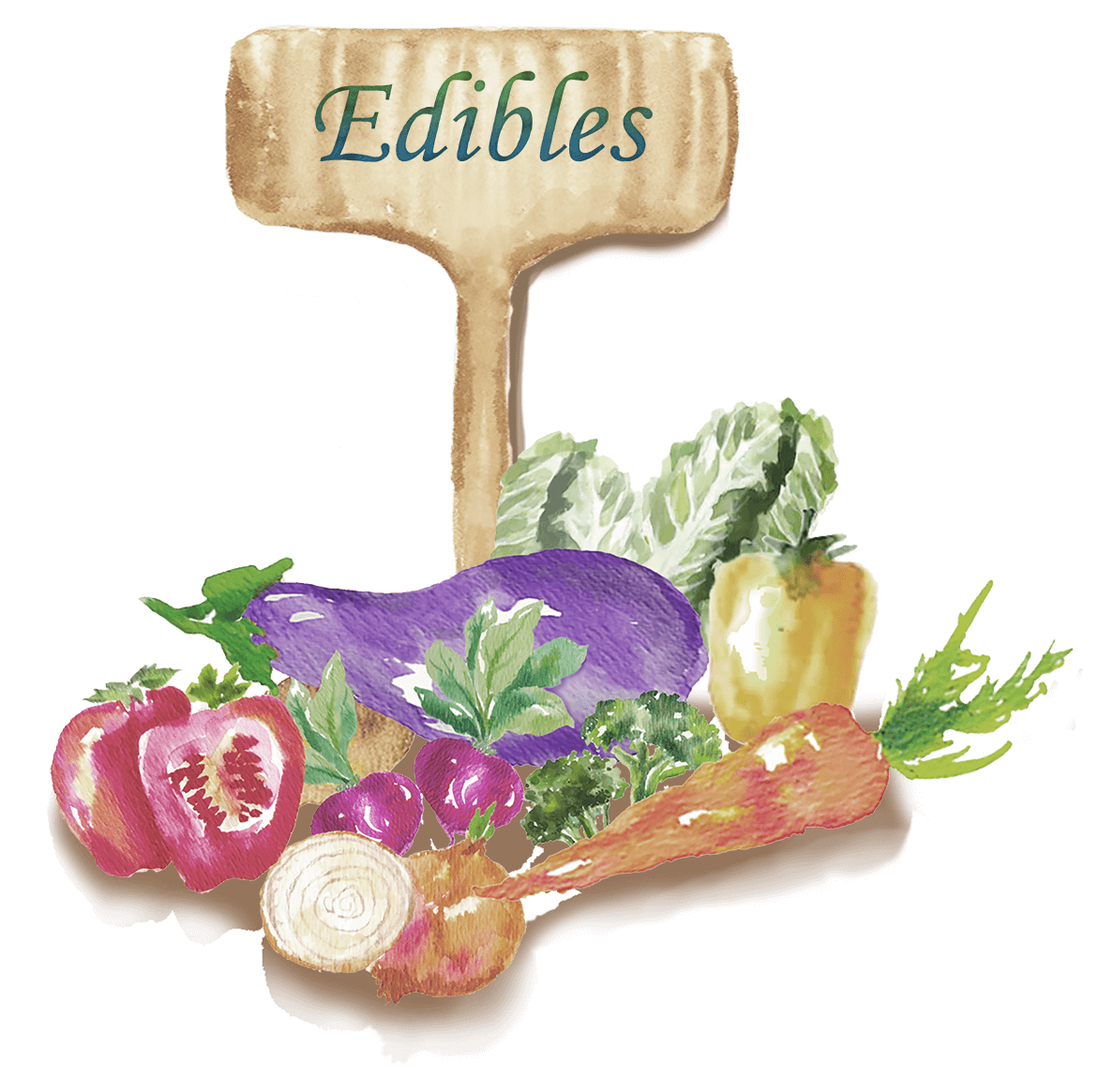 Search for Edible Plants