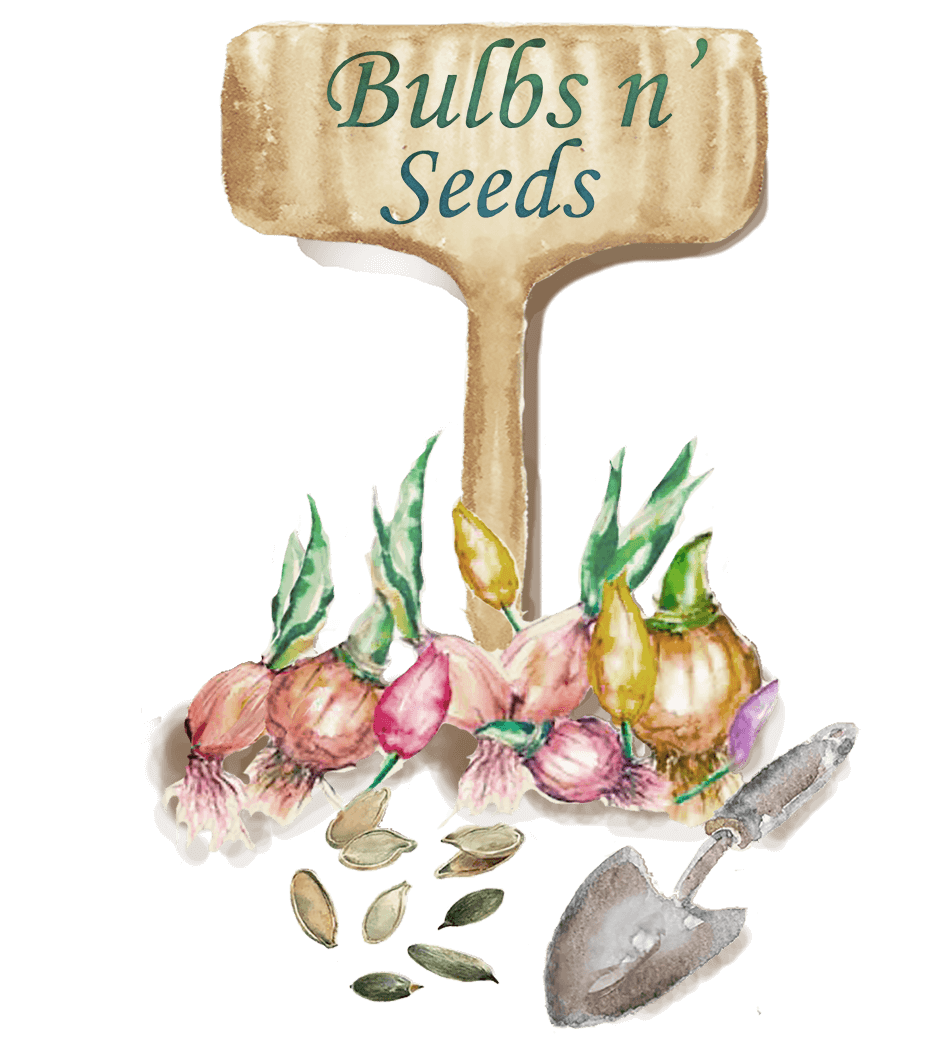 Search for Seeds & Bulbs
