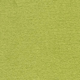 Lime swatch