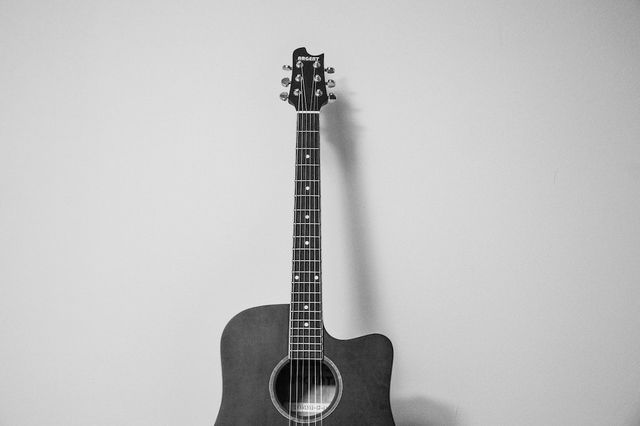 black and white gray guitar 8263 bb717