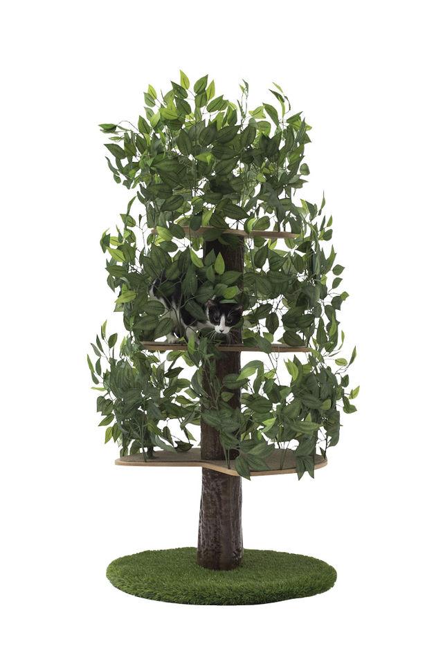 cat tree d7d41