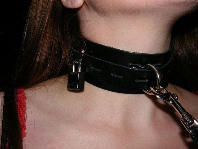 collar ee7d6