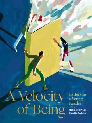 velocity 2199f