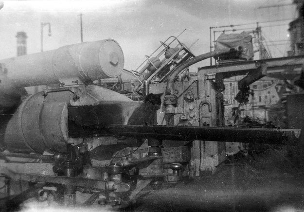 kitten on hms aurora 1914 national maritime museum 00898