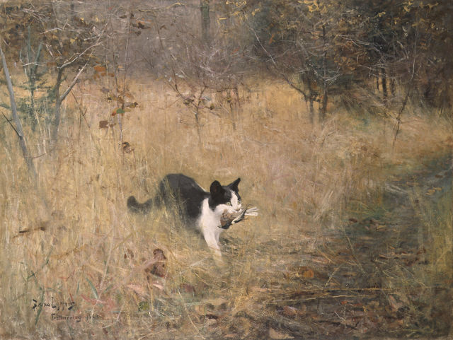 a cat bird hunting by bruno liljefors 1883 32cd7
