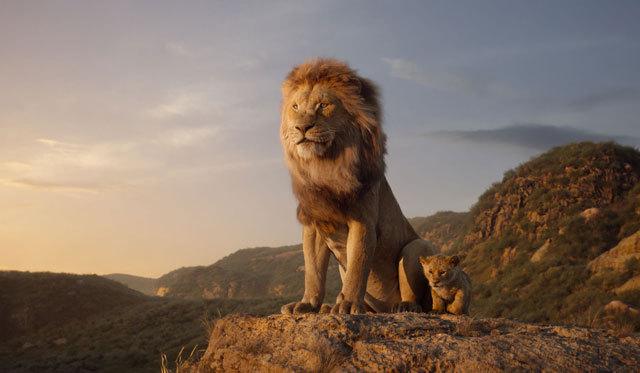 lion king 8776f