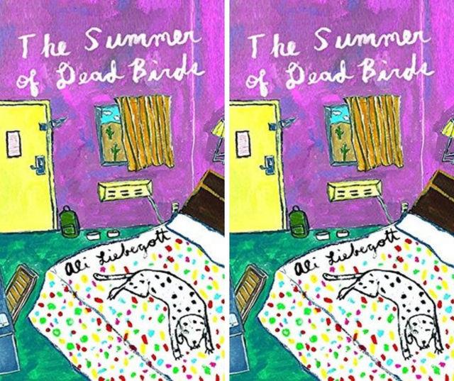 summerofdeadbirds f9288