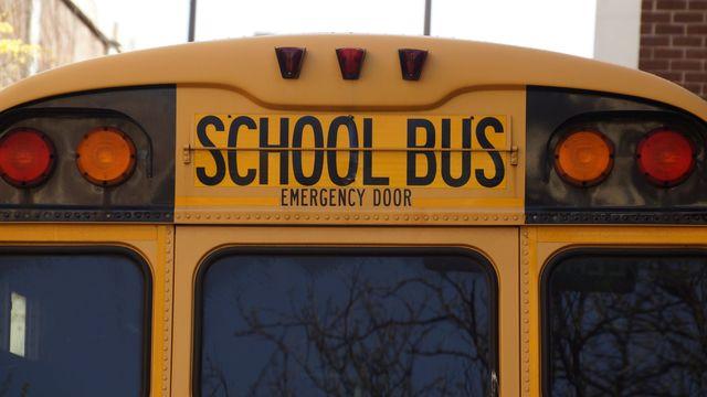 bus school school bus yellow 159658 01b0b