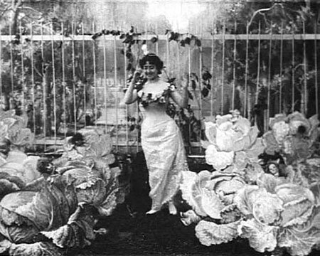the cabbage fairy 1701b