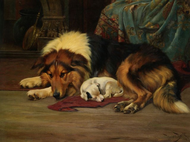 no walk today by wright barker 1864e280931941 9570e