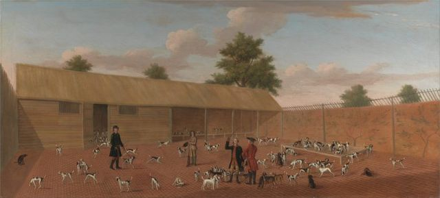 learning about the hounds by thomas butler of pall mall 1750 768x347 35135