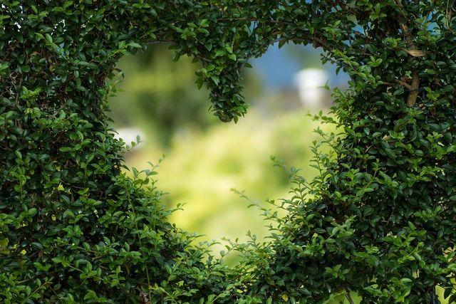 heart 1192662 1280 75eee