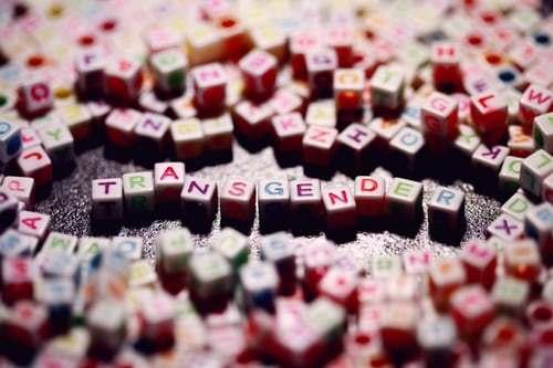 transgender blocks 29d43